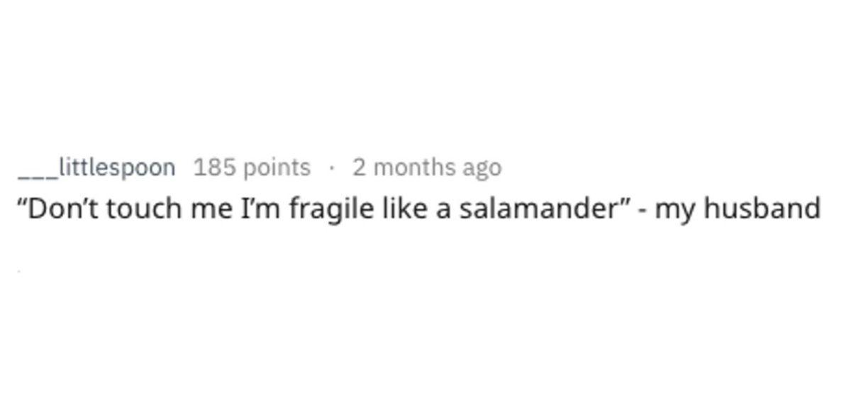 salamander cool