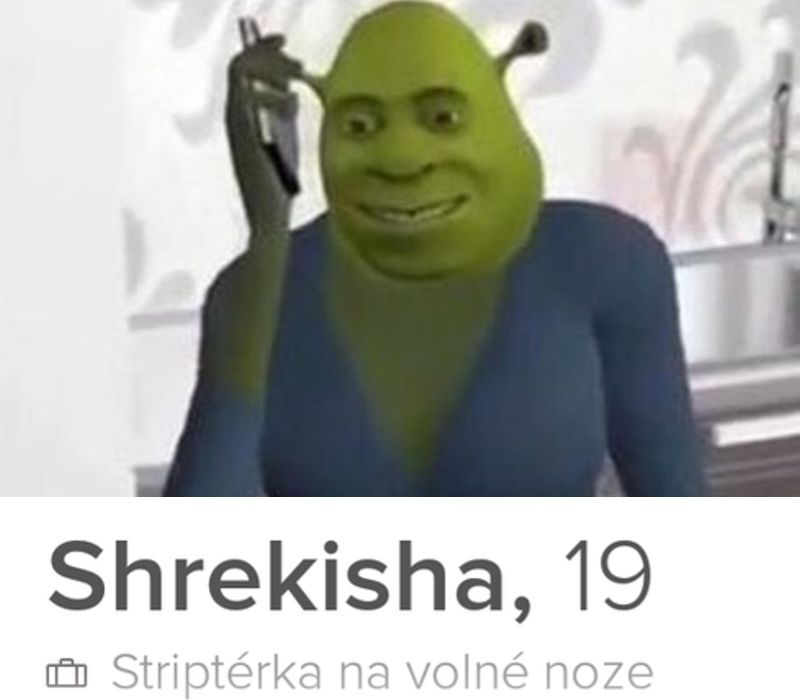 lady shrek