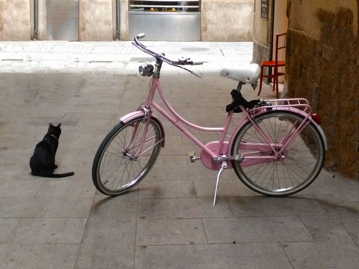 pink bicycle standing upright