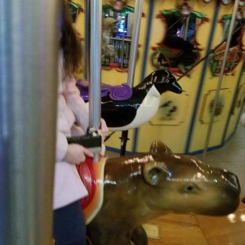 a picture of someone on a carousel