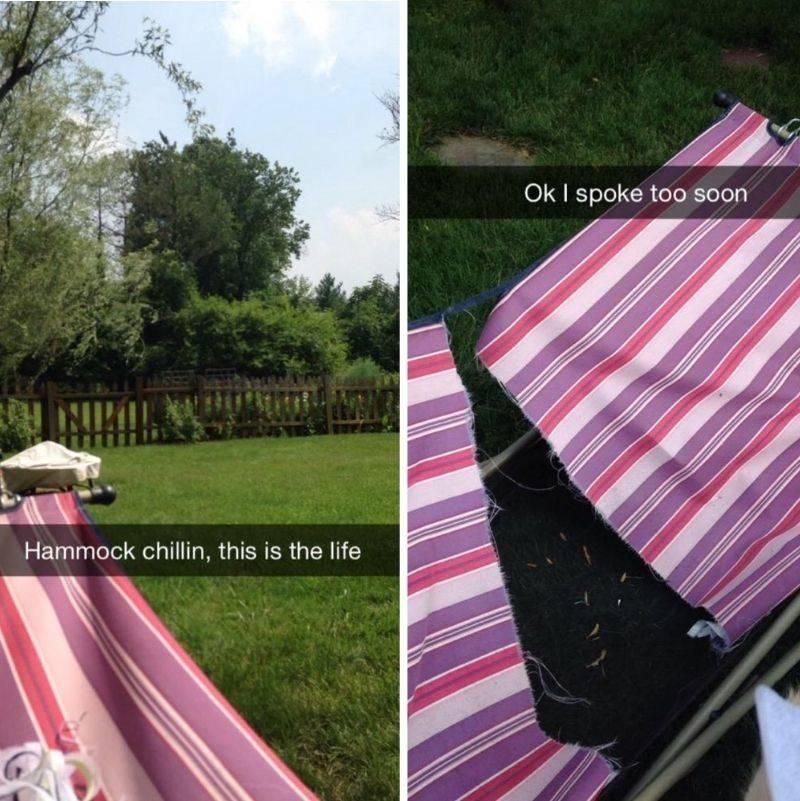 someone enjoying their hammock had their hammock break