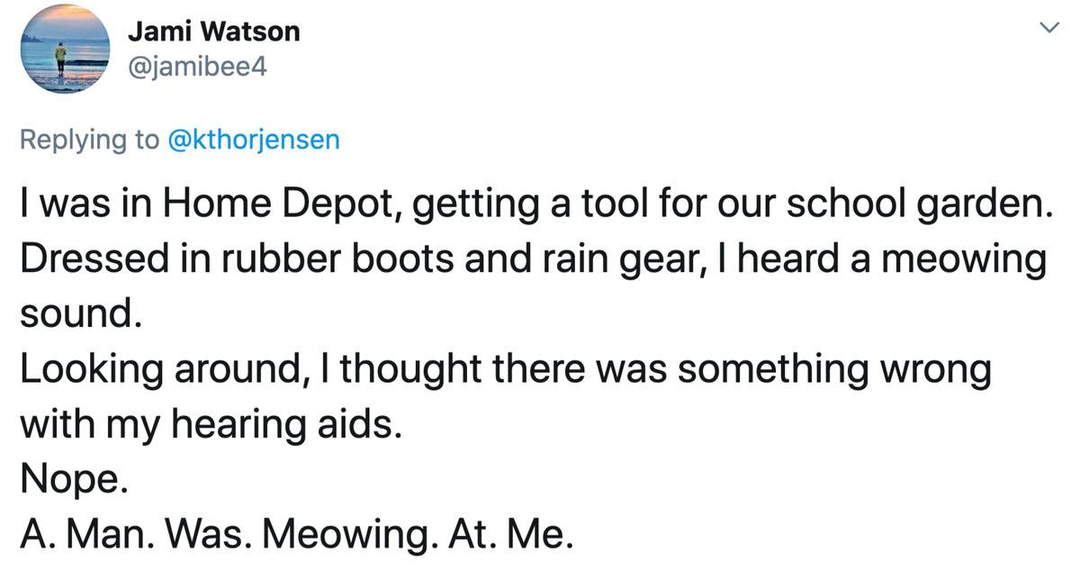 a story about a man meowing at a woman in a home depot