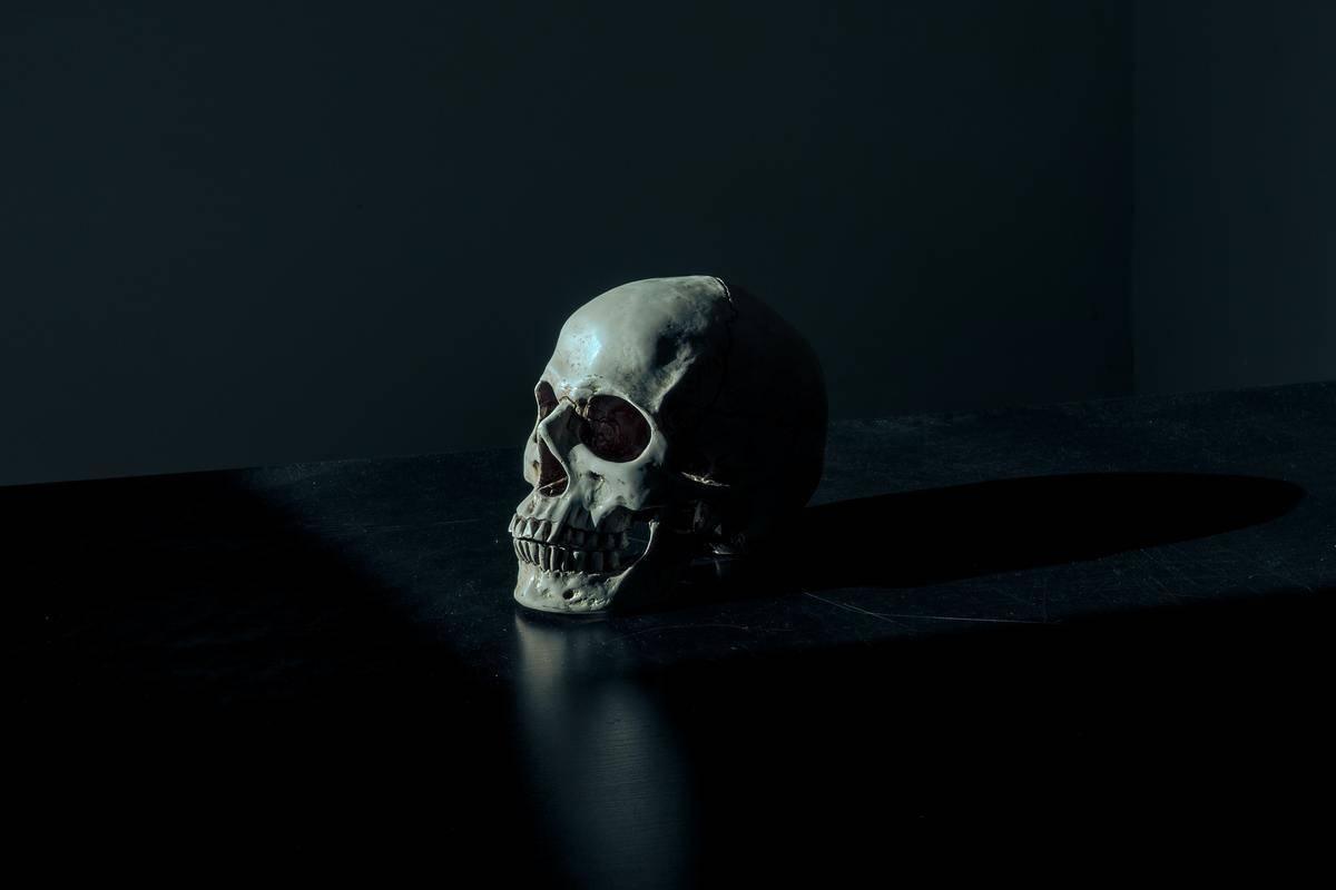 skull sitting in dark room