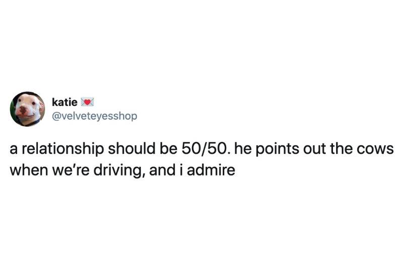 a relationship should be 50/50. he points out the cows when we're driving, and I admire