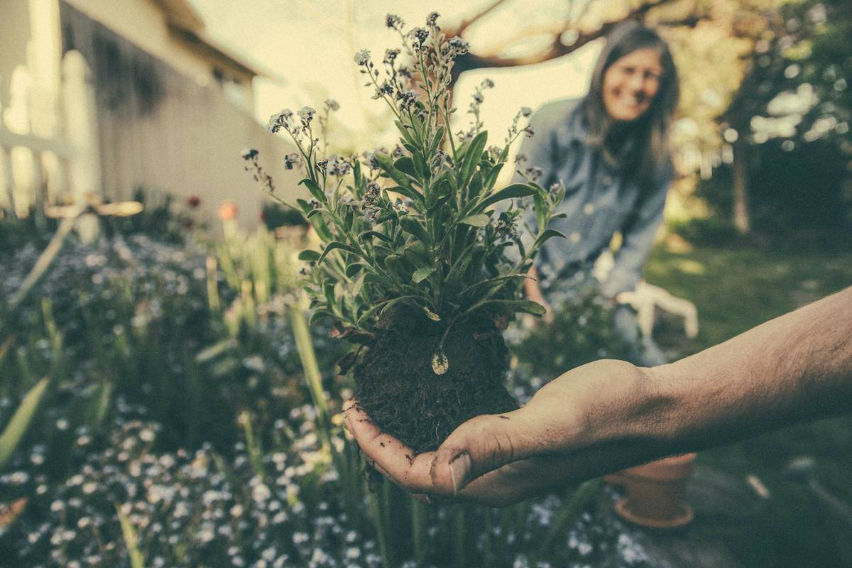 woman does some gardening