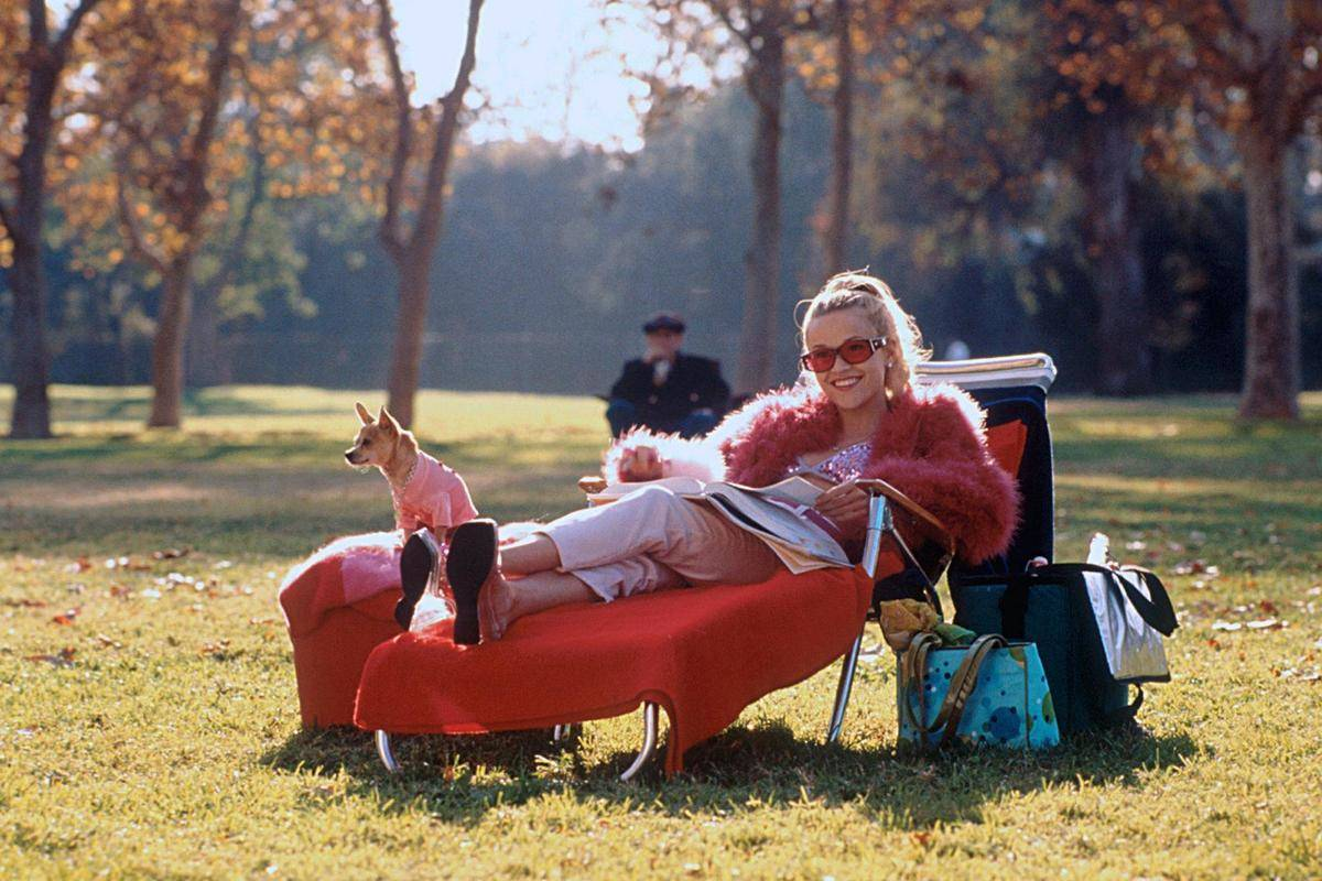 a still from Legally Blonde where the main character is sitting on a recliner reading magazines with her dog