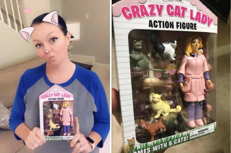 a crazy cat lady action figure