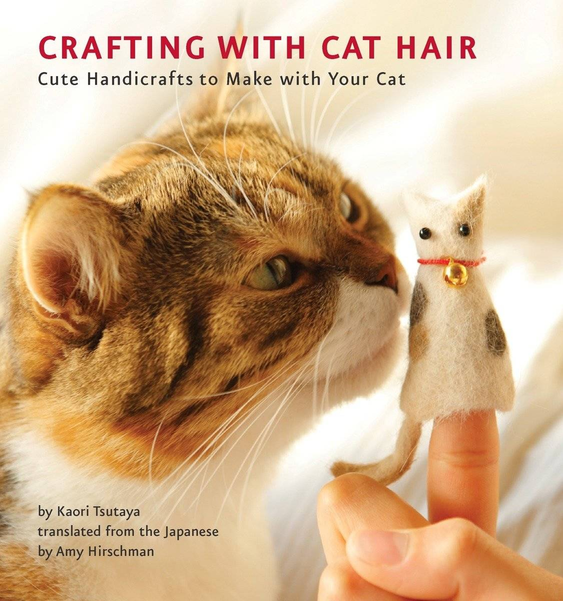 crafting book with cat and hand puppet