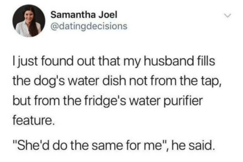 tweet: husband fills the dog's water dish with filtered water because