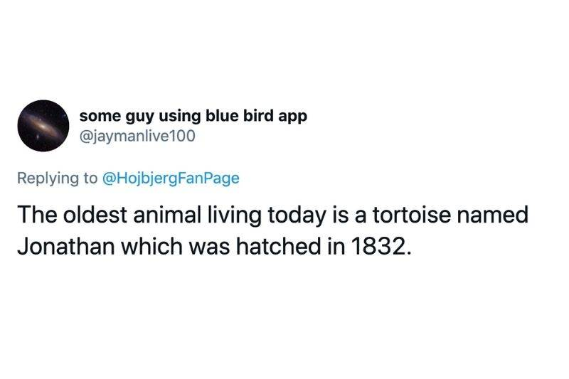 Tweet: The oldest living animal today is a tortoise named Jonathan which was hatched in 1832