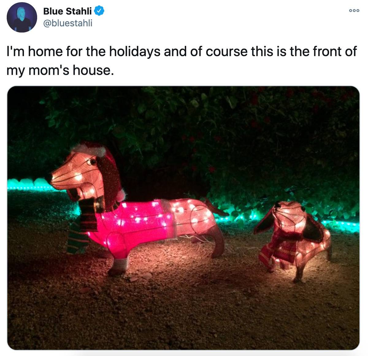 Tweet: I'm home for the holidays and of course this is the front of my mom's house [pictured: light-up dogs in Christmas sweaters]