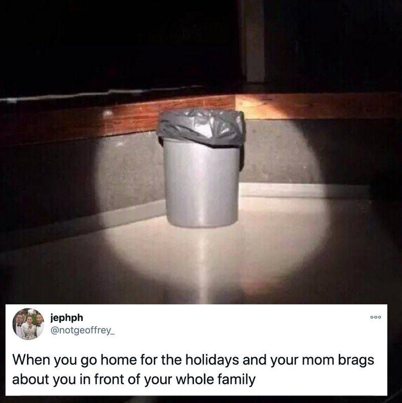Tweet: When you go home for the holidays and your mom brags about you in front of your whole family [pictured: trash can in a spotlight]