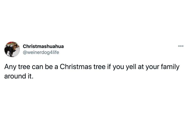 Tweet: Any tree can be a Christmas tree if you yell at your family around it