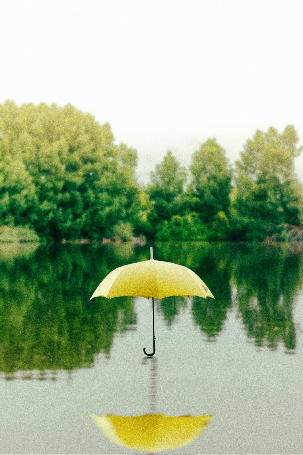 umbrella levitating over lake
