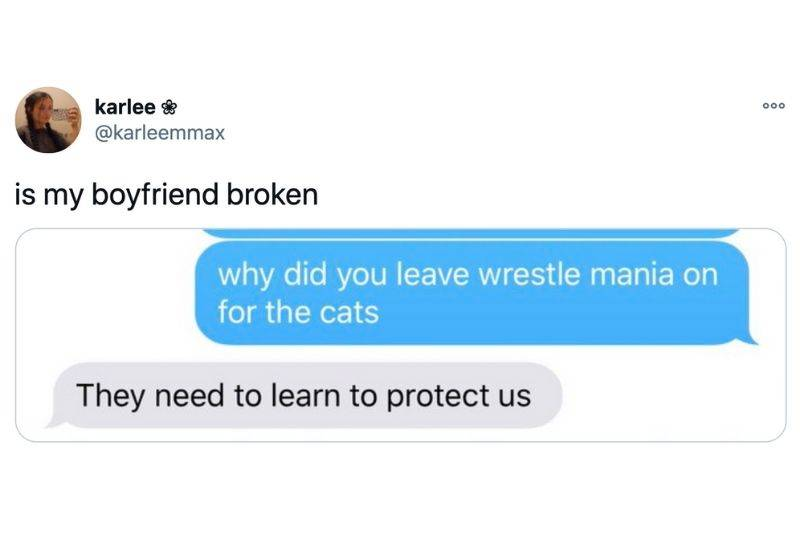 Text conversation: why did you leave wrestle mania on for the cats? they need to learn to protect us