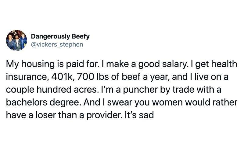 Tweet: My housing is paid for. I make a good salary. I get health insurance, 401k, 7000lbs of beef a year, and I live on a couple hundred acres. I'm a puncher by trade with a bachelors degree. And I swear a woman would rather have a loser than a provider. It's sad.