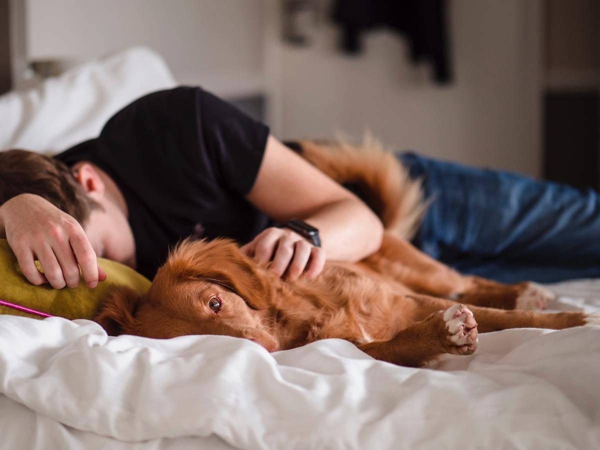 man cuddling with puppy in bed