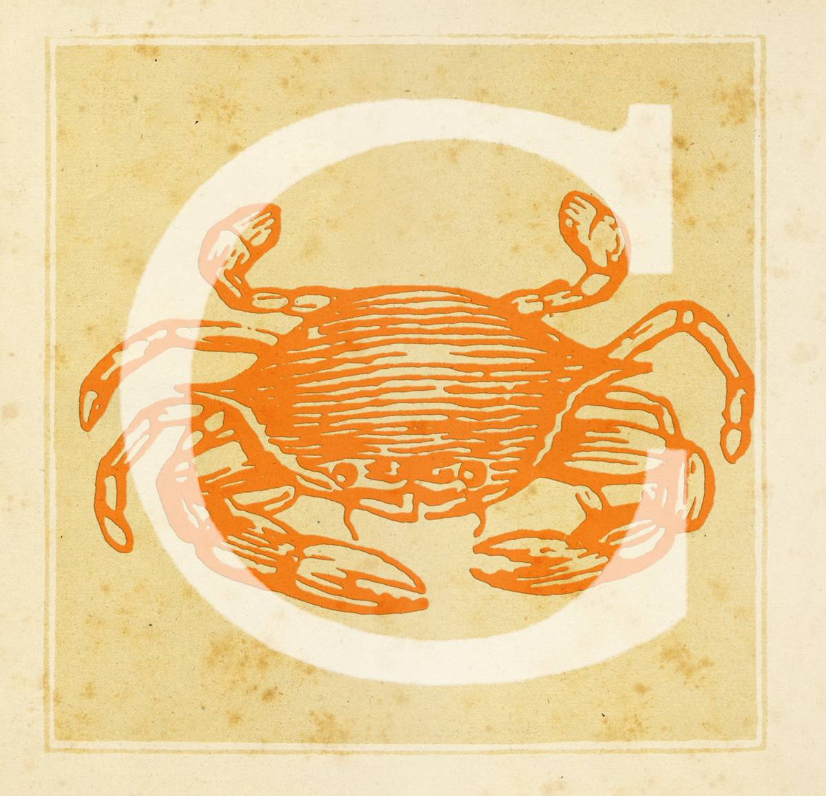 Capital letter C with Zodiacal Cancer Sign - The Crab