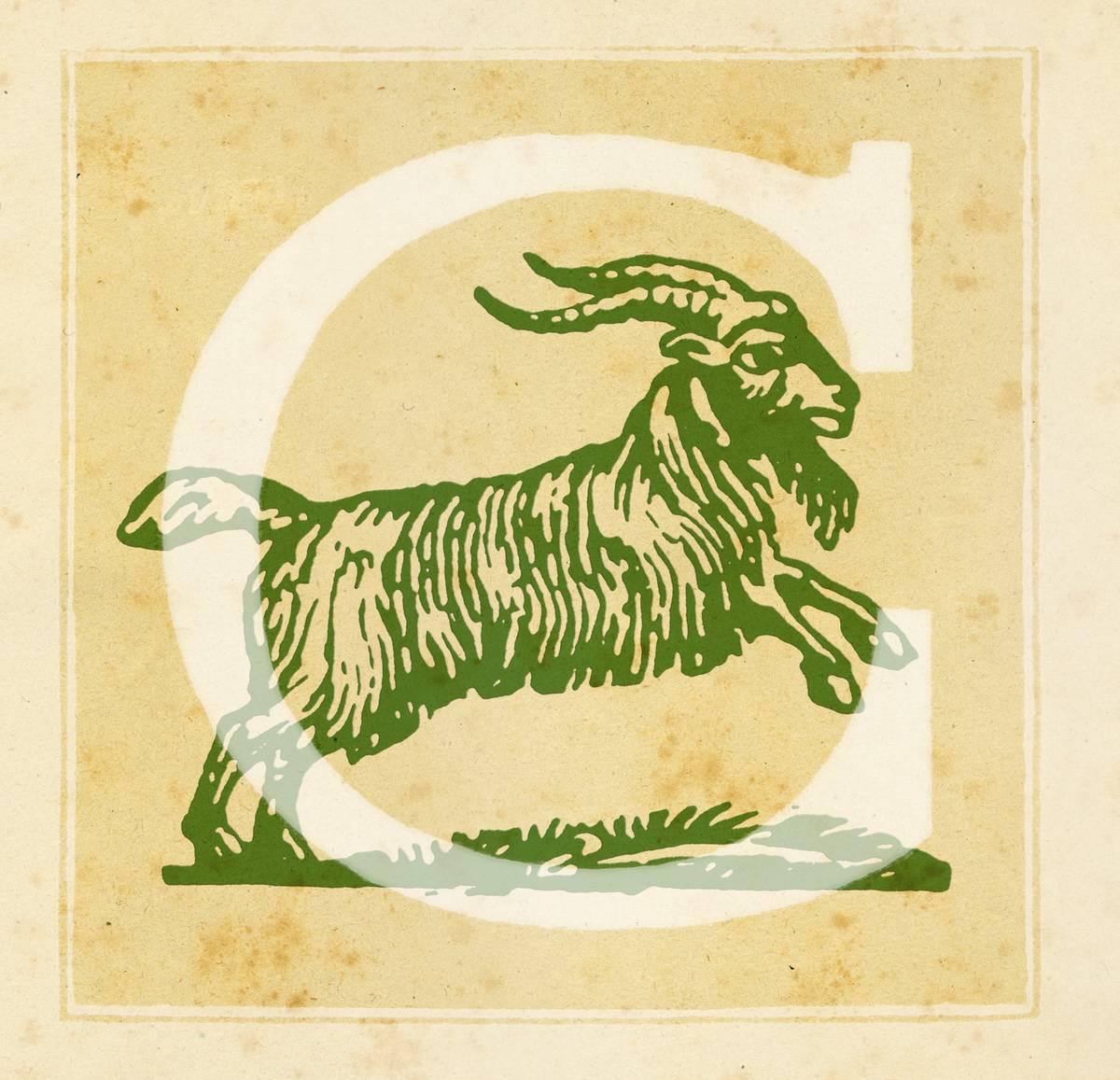 Capital letter C with Capricorn Zodiac sign