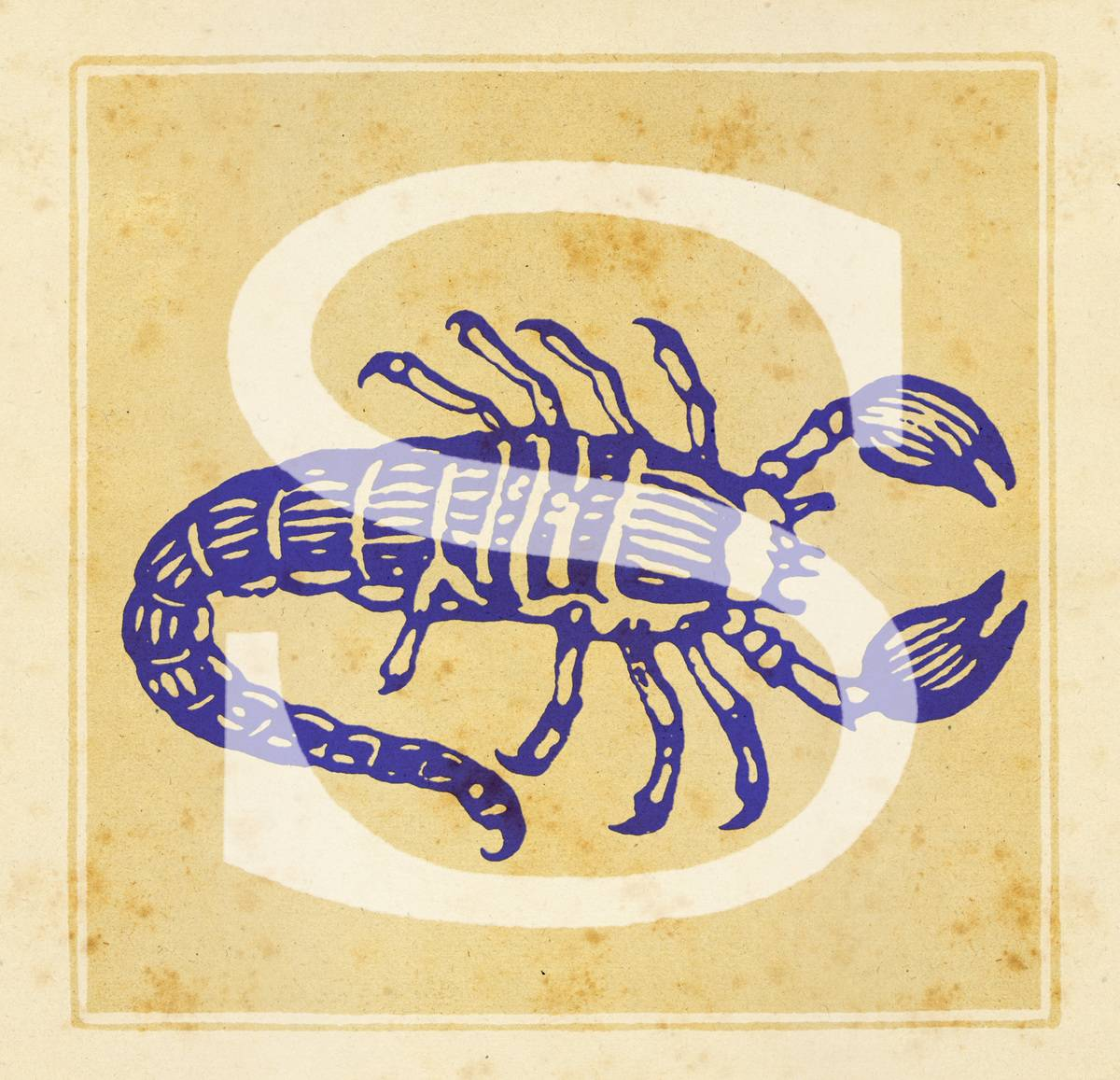 Capital letter S with zodiac sign of Scorpio - a scorpion