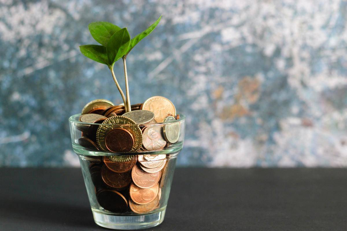 money growing from coins in a vase