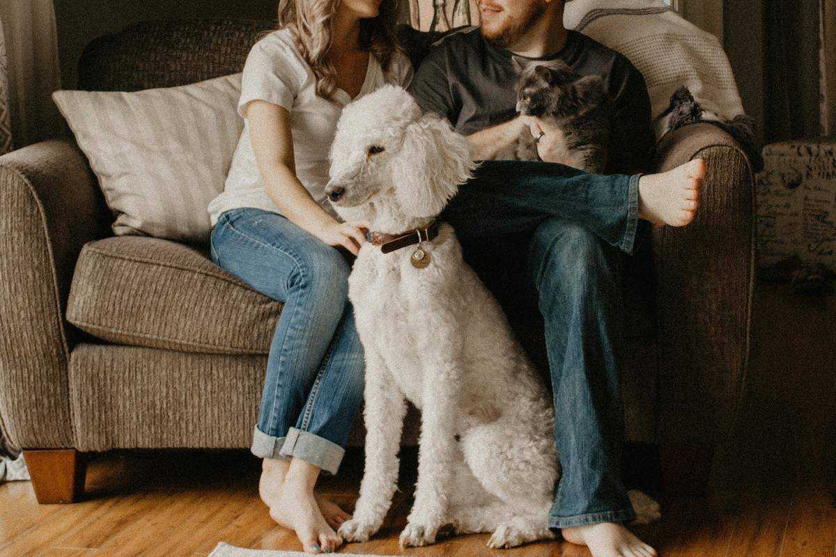 man, woman, and dog on couch