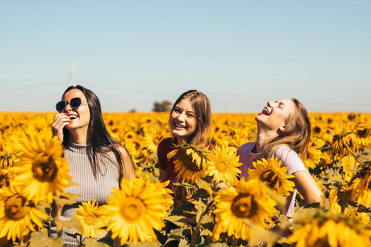 Three girls in a sunflower field smiling and laughing