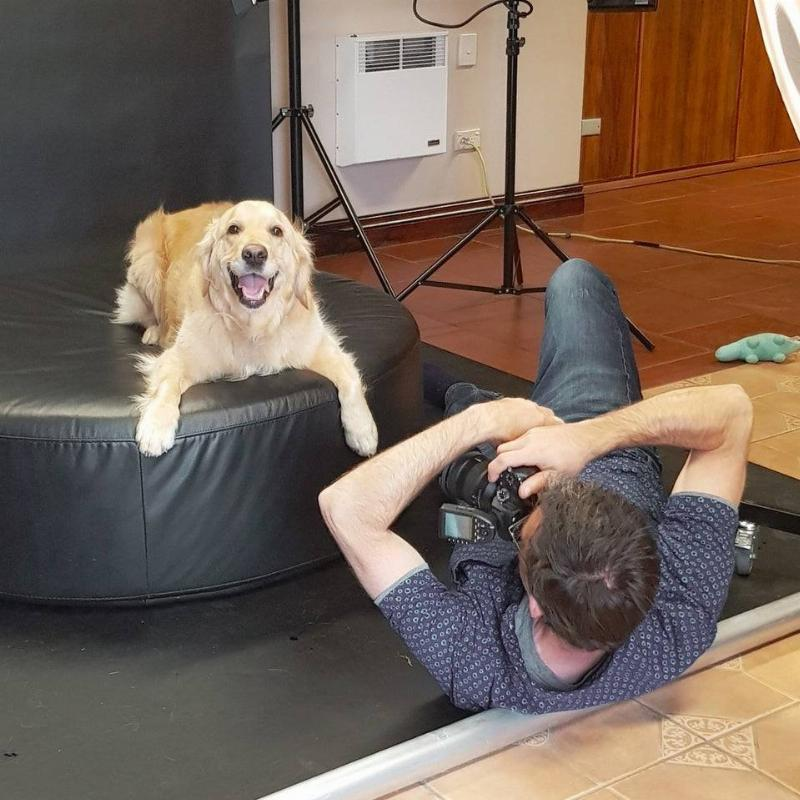 Photographer on the ground taking a picture of a dog on a cushion.