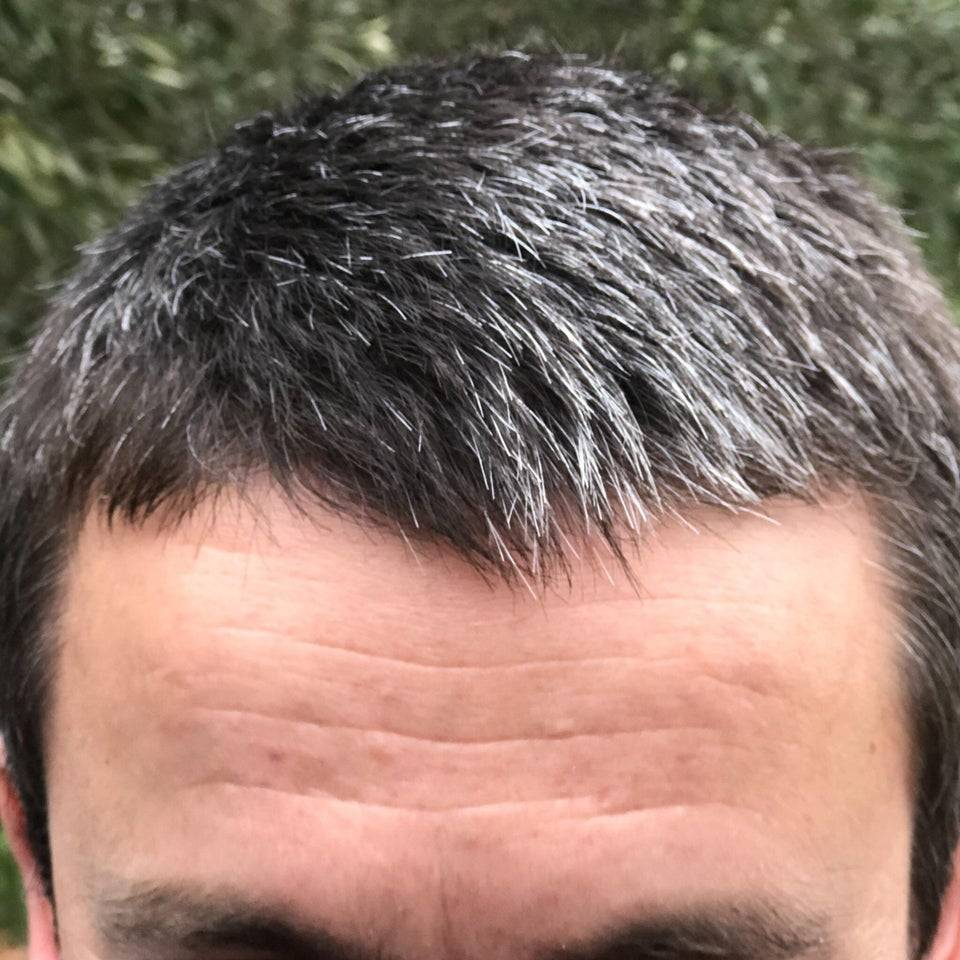 Close-up of man's head who has black hair that is going gray