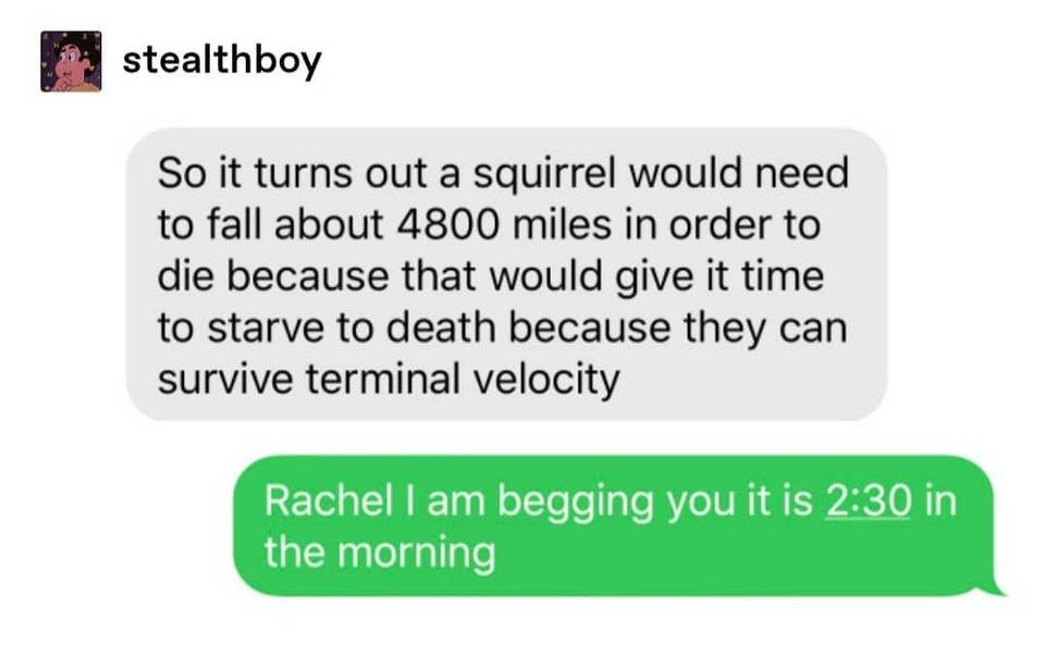 Text message from a woman that talks about the terminal velocity of a squirrel, and her friend begs her to stop because it's 2:30 a.m.